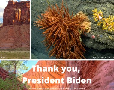 Statement: Biden honors legacy of conservation and restores protections for Utah, New England monuments